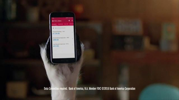 Bank of America Mobile Banking App TV Spot, 'Llove Your App: Practice' - Thumbnail 5
