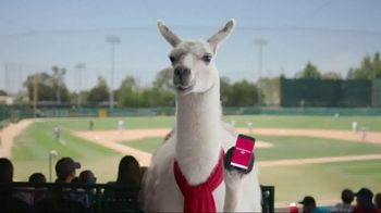 Bank of America TV Spot, 'Llove Your App: Outfield'