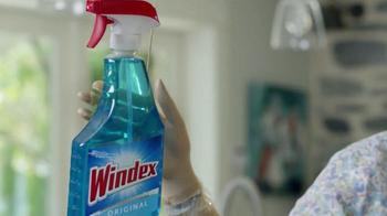 Windex TV Spot, 'Schmindex' - Thumbnail 2