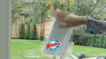 Windex TV Spot, 'Schmindex' - Thumbnail 4