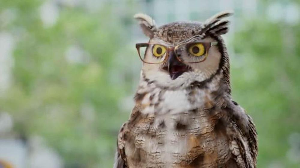 America's Best Contacts and Eyeglasses Karen Millen Sale TV Commercial, 'Flying'