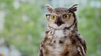 America's Best Contacts and Eyeglasses Karen Millen Sale TV Spot, 'Flying' - 33 commercial airings