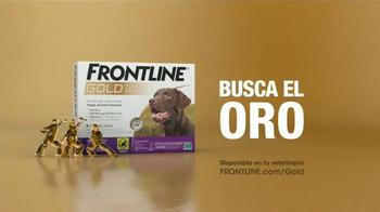 Frontline Gold TV Spot, 'Nunca paran' [Spanish] - Thumbnail 10
