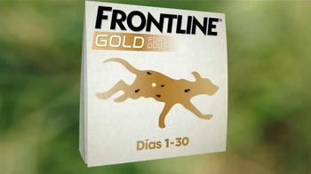 Frontline Gold TV Spot, 'Nunca paran' [Spanish] - Thumbnail 7