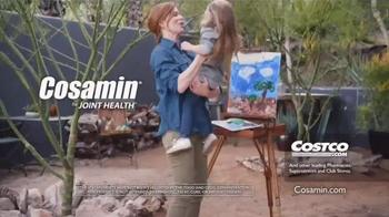 Cosamin TV Spot, 'Painting'