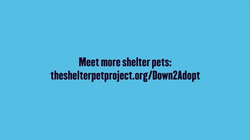 The Shelter Pet Project TV Spot, 'Prince' - Thumbnail 8