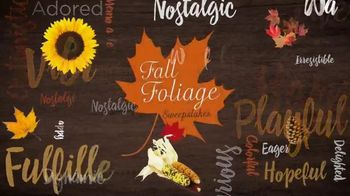Hallmark Channel Fall Foliage Sweepstakes TV Spot, 'Breathtaking Colors'