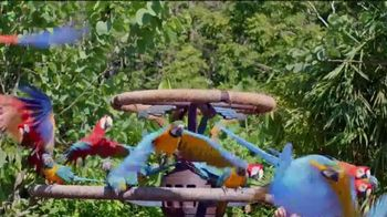 Walt Disney World TV Spot, 'Un mundo como ningúno' [Spanish] - 1199 commercial airings
