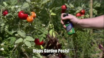Rodent Sheriff TV Spot, 'Without Toxic Pesticides'