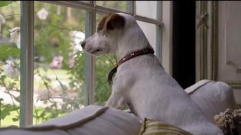 Coldwell Banker TV Spot, 'Home's Best Friend' - Thumbnail 1