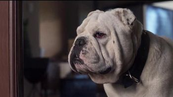 Coldwell Banker TV Spot, 'Home's Best Friend'