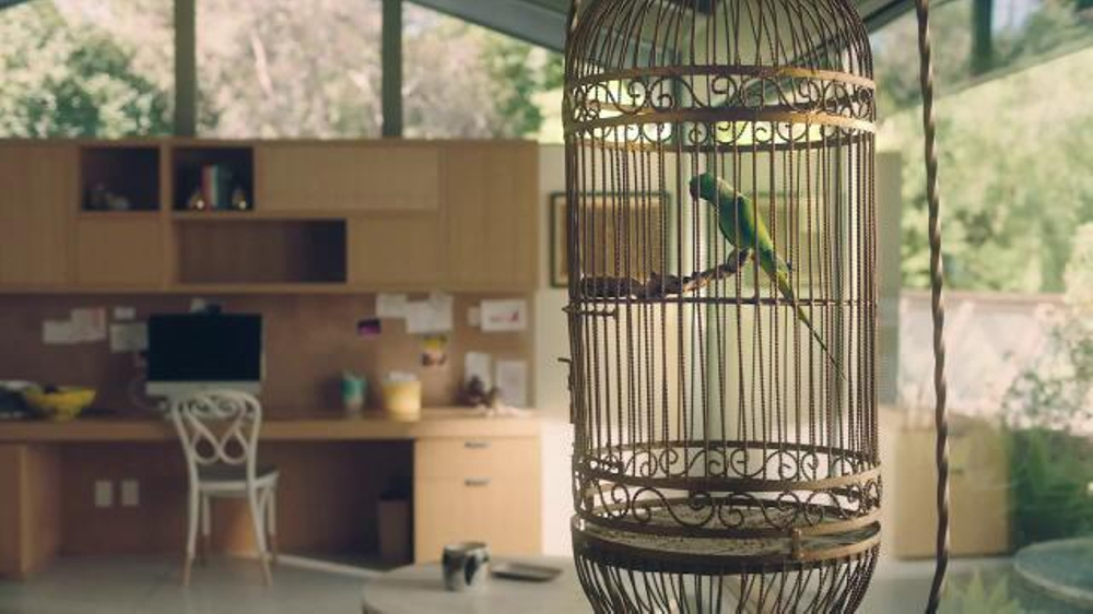Amazon Echo Dot TV Commercial, 'Alexa Moments: Parrot'
