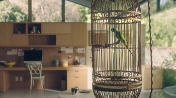 Amazon Echo Dot TV Spot, 'Alexa Moments: Parrot' - Thumbnail 2