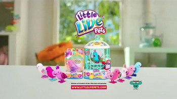 Little Live Pets Exotic Songbirds TV Spot, 'Dazzling New Looks' - Thumbnail 6