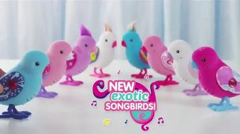 Little Live Pets Exotic Songbirds TV Spot, 'Dazzling New Looks' - Thumbnail 2