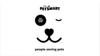PetSmart National Adoption Weekend TV Spot, 'Adoption Kit' Song By Queen - Thumbnail 8