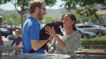 PetSmart National Adoption Weekend TV Spot, 'Adoption Kit' Song By Queen - Thumbnail 2