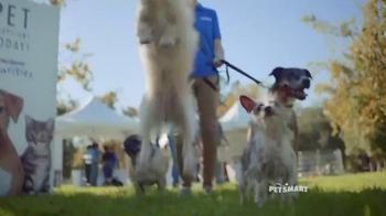 PetSmart National Adoption Weekend TV Spot, 'Adoption Kit' Song By Queen - Thumbnail 5