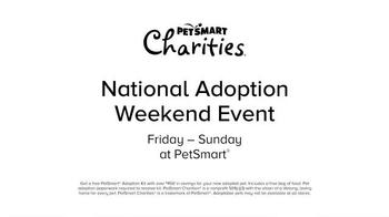 PetSmart National Adoption Weekend TV Spot, 'Adoption Kit' Song By Queen - Thumbnail 6