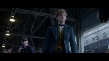 Fantastic Beasts and Where to Find Them - Alternate Trailer 18