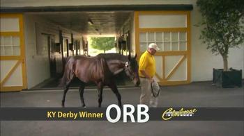 Orb: Winning Streak thumbnail