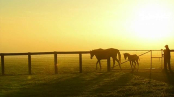 Claiborne Farm TV Spot, 'Steeped in Tradition' - Thumbnail 8