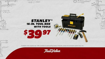 True Value Hardware TV Spot, 'The Value of Room to Run: Paints and Stains' - Thumbnail 6