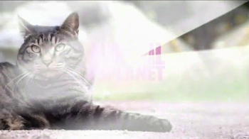 Advantage II TV Spot, 'Animal Planet: For All They Do' - Thumbnail 8