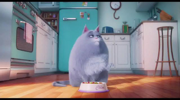 The Secret Life of Pets - Alternate Trailer 13