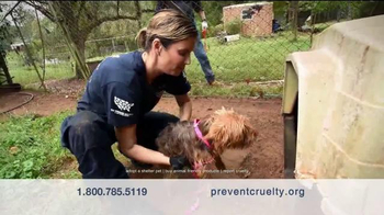 Humane Society TV Spot, 'Honestly' Featuring Bellamy Young - Thumbnail 8