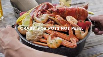 Joe's Crab Shack Corona Beach Steampot TV Spot, 'Kisses' - Thumbnail 6