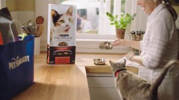 PetSmart TV Spot, 'Summer Appetite' Song by Queen