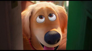 The Secret Life of Pets - Alternate Trailer 19