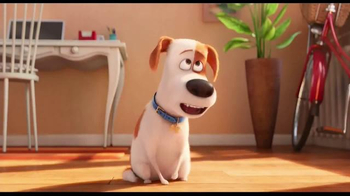 The Secret Life of Pets - Alternate Trailer 20