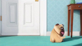 General Mills TV Spot, 'The Secret Life of Pets: Key Chains' - Thumbnail 1