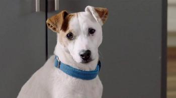 General Mills TV Spot, 'The Secret Life of Pets: Key Chains' - Thumbnail 2