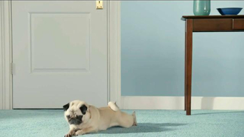 Realtor.com TV Spot, 'The Secret Life of Pets: Pets at Home Casting Call' - Thumbnail 5