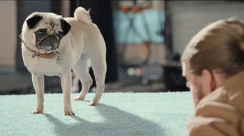 Realtor.com TV Spot, 'The Secret Life of Pets: Pets at Home Casting Call' - Thumbnail 7
