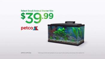 PETCO TV Spot, 'Christmas Box Shaker' - Thumbnail 9