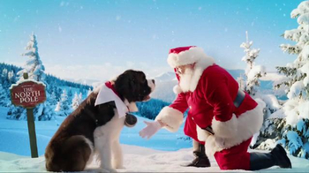 Elf Pets: A Saint Bernard Tradition TV Spot, 'Acts of Kindness'