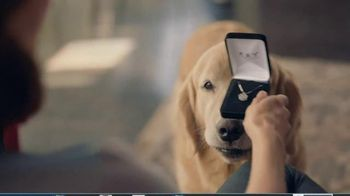 Kay Jewelers TV Spot, 'Man's Other Best Friend: This Holiday:  Charmed Memories: Up to 30%'