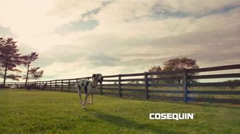 Cosequin TV Spot, 'Veterans Salute' Song by The Tokens - 15 commercial airings