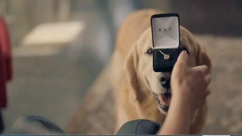 Kay Jewelers Diamonds in Rhythm TV Spot, 'Man's Other Best Friend: This Holiday: Up to 30 Percent' - Thumbnail 2
