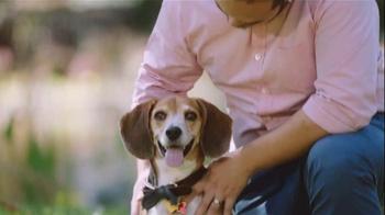 Purina TV Spot, 'It's #DogThanking Season' - Thumbnail 3