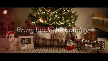 Bring Back the Holidays: Four-Legged Friend thumbnail