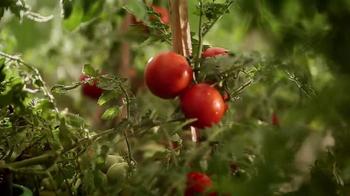 Progresso Minestrone Soup TV Spot, 'Secret Ingredient' - Thumbnail 5
