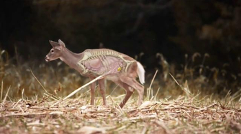 Wildgame Innovations Wild Estrus Doe Squirt TV Spot, 'No More Crying' - Thumbnail 3