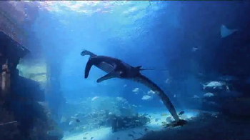Atlantis Bahamas Black Friday Sale TV Spot, 'Biggest Sale of the Year' - Thumbnail 3