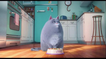 The Secret Life of Pets - Alternate Trailer 1