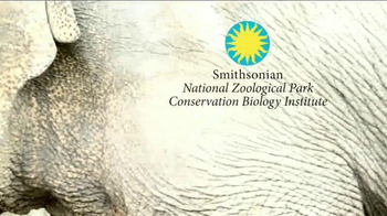 Smithsonian National Zoo Conservation Biology Institute TV Spot, 'Future' - Thumbnail 9
